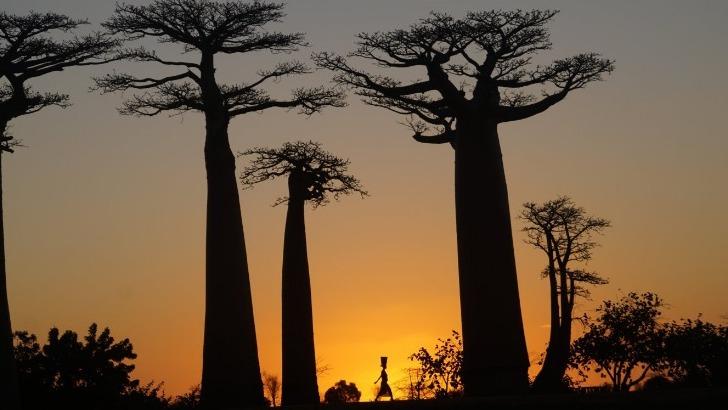 A la découverte d'Antananarivo.